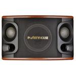 Loa Partyhouse AP12